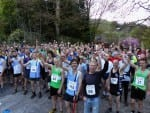 Masson Hill Race 2015 Pictures